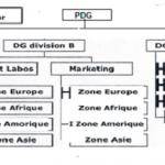 Structure par zone géographique: avantages et inconvénients